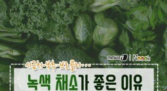 [건강] 녹색 채소가 좋은 이유