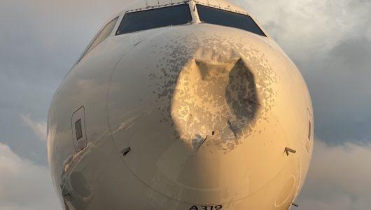 [포토뉴스] 델타 여객기, 새떼에 부딪혀 코가 납작