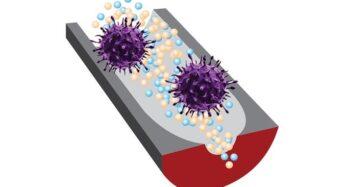 """""""코로나 전염성·비전염성 구별하는 DNA 센서 개발"""""""